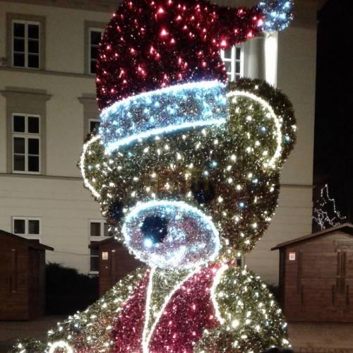 Installation of Christmas illuminations - Christmas lights